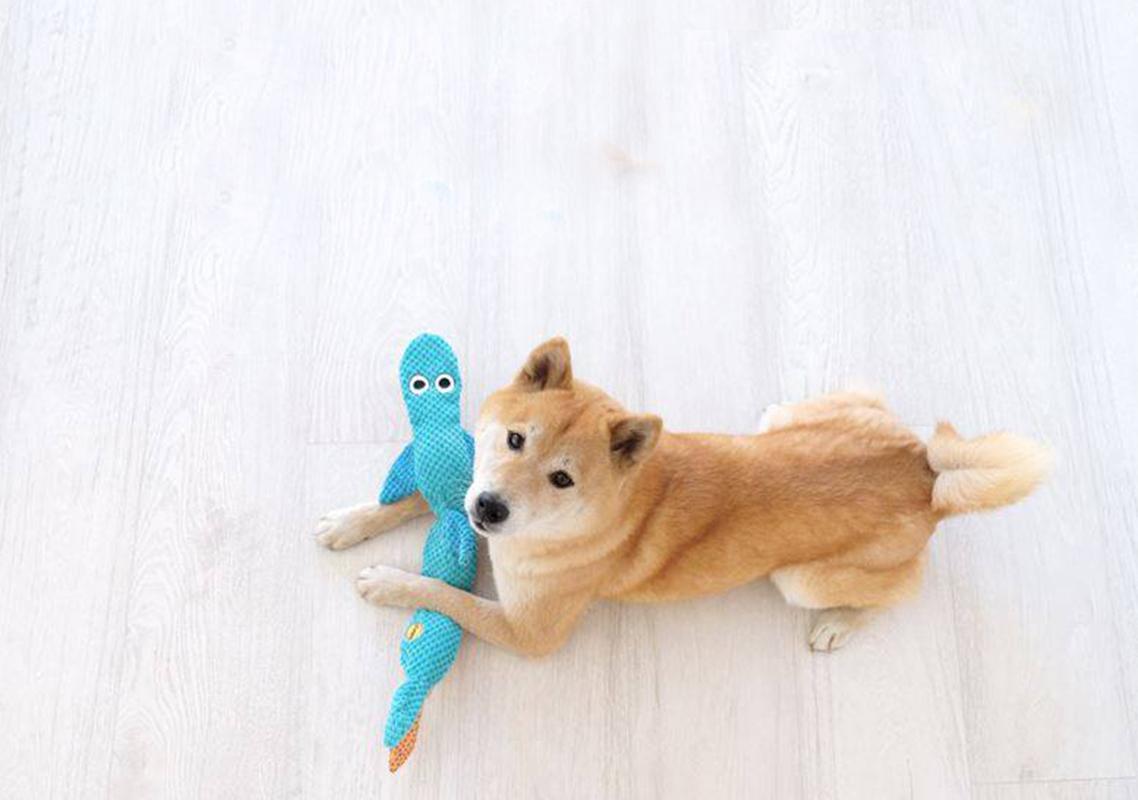 Brinquedos sem enchimento